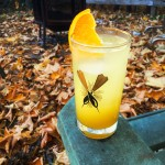 diy-orange-soda